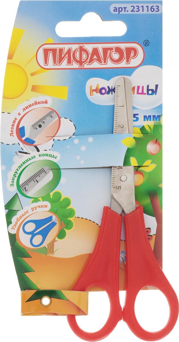 Пифагор Ножницы детские с линейкой цвет красный 13 смFS-54102Детские ножницы Пифагор прекрасно подойдут для детского творчества.Лезвия выполнены из стали с закругленными концами, что делает процесс работы с ними безопасным для ребенка.Ножницы хорошо справляются с резкой бумаги, ткани, картона и станут незаменимым помощником в процессе создания аппликаций и других поделок. Лезвия ножниц имеют линейку до 5 см.Предназначены для детей от пяти лет.