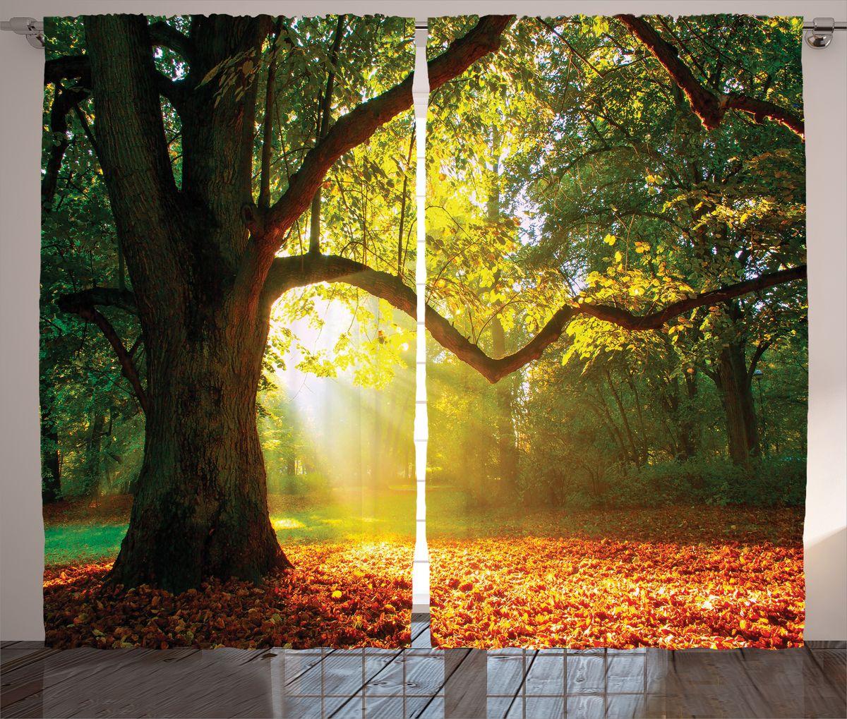 Комплект фотоштор Magic Lady Старое дерево в солнечном свете, на ленте, высота 265 см. шсг_1658921237Компания Сэмболь изготавливает шторы из высококачественного сатена (полиэстер 100%). При изготовлении используются специальные гипоаллергенные чернила для прямой печати по ткани, безопасные для человека и животных. Экологичность продукции Magic lady и безопасность для окружающей среды подтверждены сертификатом Oeko-Tex Standard 100. Крепление: крючки для крепления на шторной ленте (50 шт). Возможно крепление на трубу. Внимание! При нанесении сублимационной печати на ткань технологическим методом при температуре 240°С, возможно отклонение полученных размеров (указанных на этикетке и сайте) от стандартных на + - 3-5 см. Производитель старается максимально точно передать цвета изделия на фотографиях, однако искажения неизбежны и фактический цвет изделия может отличаться от воспринимаемого по фото. Обратите внимание! Шторы изготовлены из полиэстра сатенового переплетения, а не из сатина (хлопок). Размер одного полотна шторы: 145х265 см. В комплекте 2 полотна шторы и 50 крючков.