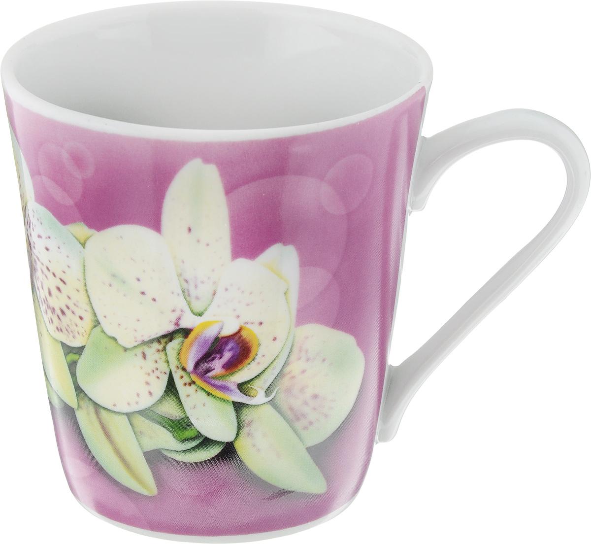 Кружка Классик. Орхидея, цвет: розовый, белый, 300 мл115510Кружка Классик. Орхидея изготовлена из высококачественного фарфора. Изделие оформлено красочным рисунком и покрыто превосходной сверкающей глазурью. Изысканная кружка прекрасно оформит стол к чаепитию и станет его неизменным атрибутом.Диаметр кружки (по верхнему краю): 9 см.Высота кружки: 9,5 см.