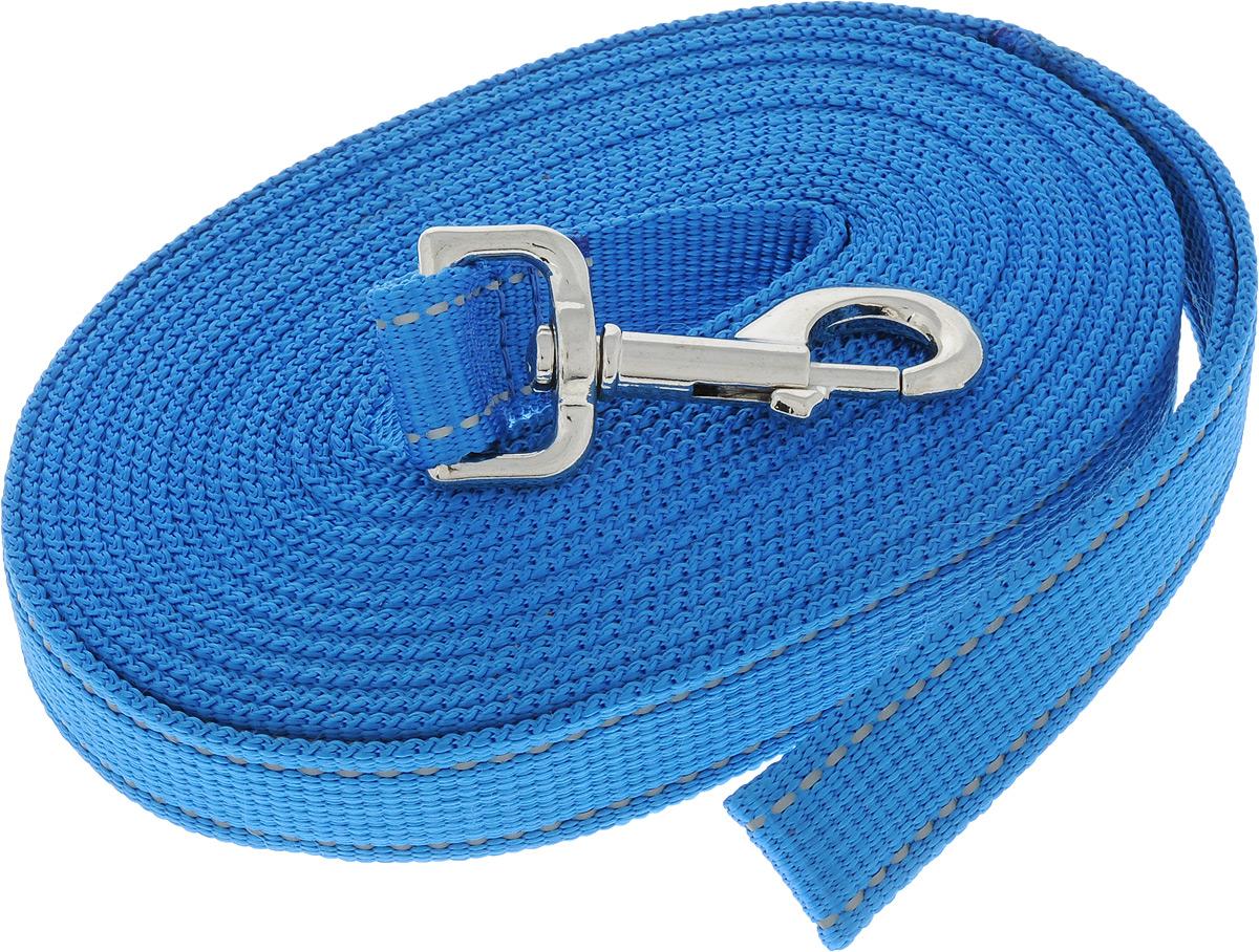 Поводок капроновый для собак Аркон, цвет: темно-голубой, ширина 2,5 см, длина 7 м0120710Поводок для собак Аркон изготовлен из высококачественного цветного капрона и снабжен металлическим карабином. Изделие отличается не только исключительной надежностью и удобством, но и привлекательным современным дизайном.Поводок - необходимый аксессуар для собаки. Ведь в опасных ситуациях именно он способен спасти жизнь вашему любимому питомцу. Иногда нужно ограничивать свободу своего четвероногого друга, чтобы защитить его или себя от неприятностей на прогулке. Длина поводка: 7 м.Ширина поводка: 2,5 см.