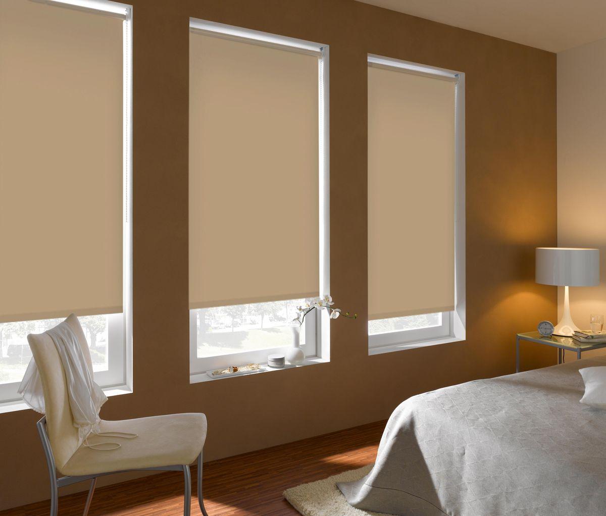 Штора рулонная Эскар Blackout, светонепроницаемая, цвет: бежевый, ширина 160 см, высота 170 см2615S545JBРулонными шторами можно оформлять окна как самостоятельно, так и использовать в комбинации с портьерами. Это поможет предотвратить выгорание дорогой ткани на солнце и соединит функционал рулонных с красотой навесных.Преимущества применения рулонных штор для пластиковых окон:- имеют прекрасный внешний вид: многообразие и фактурность материала изделия отлично смотрятся в любом интерьере; - многофункциональны: есть возможность подобрать шторы способные эффективно защитить комнату от солнца, при этом она не будет слишком темной.- Есть возможность осуществить быстрый монтаж.ВНИМАНИЕ! Размеры ширины изделия указаны по ширине ткани!Во время эксплуатации не рекомендуется полностью разматывать рулон, чтобы не оторвать ткань от намоточного вала.В случае загрязнения поверхности ткани, чистку шторы проводят одним из способов, в зависимости от типа загрязнения: легкое поверхностное загрязнение можно удалить при помощи канцелярского ластика; чистка от пыли производится сухим методом при помощи пылесоса с мягкой щеткой-насадкой; для удаления пятна используйте мягкую губку с пенообразующим неагрессивным моющим средством или пятновыводитель на натуральной основе (нельзя применять растворители).