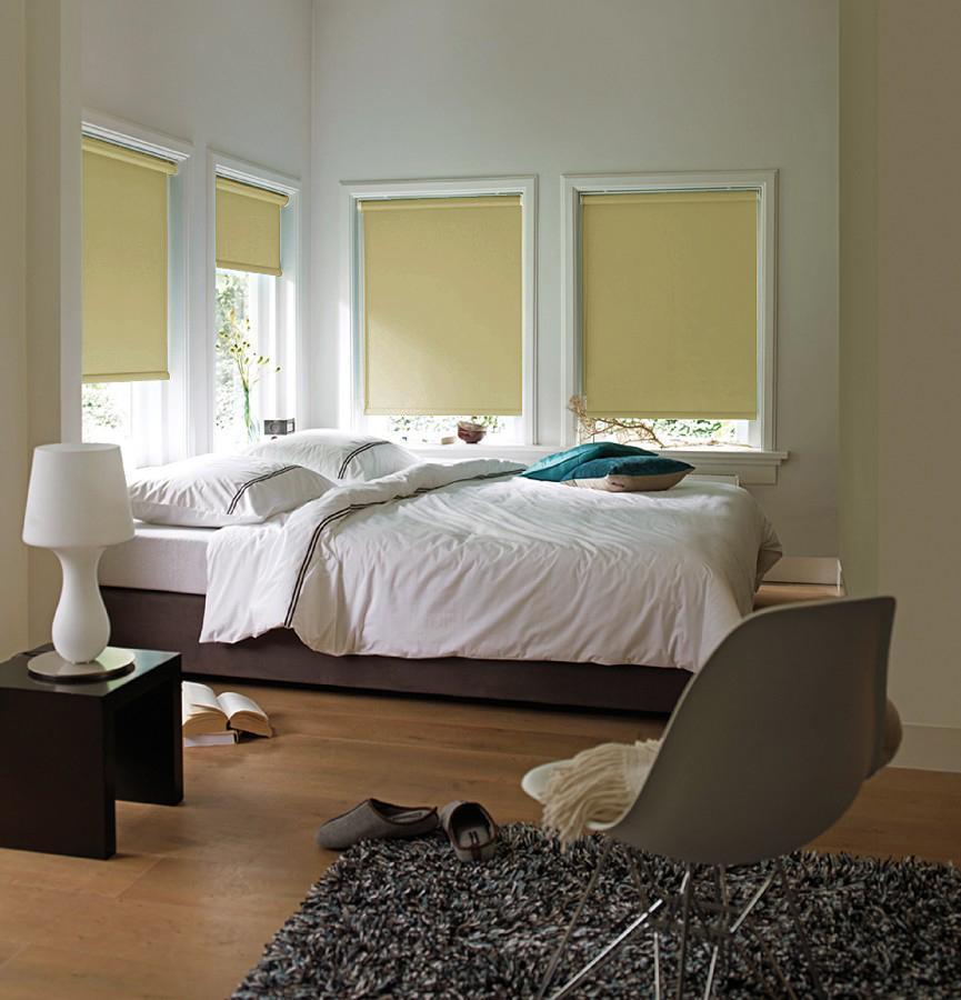 Штора рулонная Эскар Blackout, светонепроницаемая, цвет: ванильный, ширина 120 см, высота 170 см1004900000360Рулонными шторами можно оформлять окна как самостоятельно, так и использовать в комбинации с портьерами. Это поможет предотвратить выгорание дорогой ткани на солнце и соединит функционал рулонных с красотой навесных.Преимущества применения рулонных штор для пластиковых окон:- имеют прекрасный внешний вид: многообразие и фактурность материала изделия отлично смотрятся в любом интерьере; - многофункциональны: есть возможность подобрать шторы способные эффективно защитить комнату от солнца, при этом она не будет слишком темной.- Есть возможность осуществить быстрый монтаж.ВНИМАНИЕ! Размеры ширины изделия указаны по ширине ткани!Во время эксплуатации не рекомендуется полностью разматывать рулон, чтобы не оторвать ткань от намоточного вала.В случае загрязнения поверхности ткани, чистку шторы проводят одним из способов, в зависимости от типа загрязнения: легкое поверхностное загрязнение можно удалить при помощи канцелярского ластика; чистка от пыли производится сухим методом при помощи пылесоса с мягкой щеткой-насадкой; для удаления пятна используйте мягкую губку с пенообразующим неагрессивным моющим средством или пятновыводитель на натуральной основе (нельзя применять растворители).