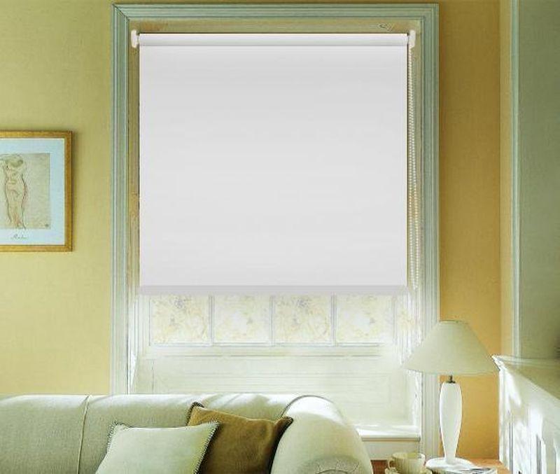 Штора рулонная Эскар Blackout, светоотражающая, цвет: белый, ширина 160 см, высота 170 см89008160170Рулонными шторами можно оформлять окна как самостоятельно, так и использовать в комбинации с портьерами. Это поможет предотвратить выгорание дорогой ткани на солнце и соединит функционал рулонных с красотой навесных.Преимущества применения рулонных штор для пластиковых окон:- имеют прекрасный внешний вид: многообразие и фактурность материала изделия отлично смотрятся в любом интерьере; - многофункциональны: есть возможность подобрать шторы способные эффективно защитить комнату от солнца, при этом она не будет слишком темной.- Есть возможность осуществить быстрый монтаж.ВНИМАНИЕ! Размеры ширины изделия указаны по ширине ткани!Во время эксплуатации не рекомендуется полностью разматывать рулон, чтобы не оторвать ткань от намоточного вала.В случае загрязнения поверхности ткани, чистку шторы проводят одним из способов, в зависимости от типа загрязнения: легкое поверхностное загрязнение можно удалить при помощи канцелярского ластика; чистка от пыли производится сухим методом при помощи пылесоса с мягкой щеткой-насадкой; для удаления пятна используйте мягкую губку с пенообразующим неагрессивным моющим средством или пятновыводитель на натуральной основе (нельзя применять растворители).