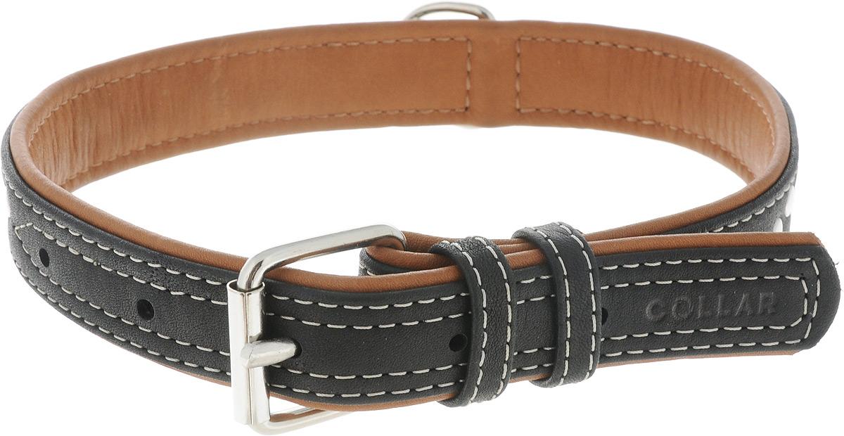 Ошейник для собак CoLLaR SOFT, цвет: черный, коричневый, ширина 2,5 см, обхват шеи 38-49 см. 7206DM-7341Ошейник для собак CoLLaR SOFT изготовлен из высококачественной кожи. Он устойчив к влажности и перепадам температур. Сверхпрочные нити, крепкие металлические элементы делают ошейник надежным и долговечным.Обхват ошейника регулируется при помощи пряжки. Ошейник оснащен металлическим кольцом для крепления поводка. Изделие отличается высоким качеством, удобством и универсальностью. Минимальный обхват шеи: 38 см. Максимальный обхват шеи: 49 см. Ширина ошейника: 2,5 см. Длина ошейника: 53 см.