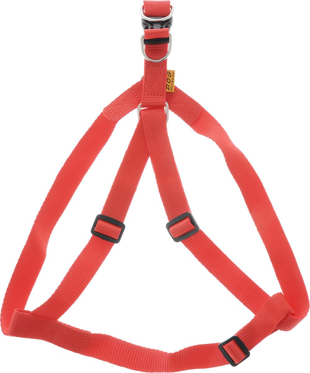 Шлейка для собак DOGextreme, регулируемая, цвет: красный, ширина 2,5 см, обхват груди 60-90 см00391Шлейка DOGExtreme, изготовленная из прочного нейлона, подходит для собак крупных пород. Крепкие пластиковые и металлические элементы делают ее надежной и долговечной. Шлейка - это альтернатива ошейнику. Правильно подобранная шлейка не стесняет движения питомца, не натирает кожу, поэтому животное чувствует себя в ней уверенно и комфортно. Размер регулируется при помощи пряжки. Изделие отличается высоким качеством, удобством и универсальностью.Обхват груди: 60-90 см.Ширина шлейки: 2,5 см.