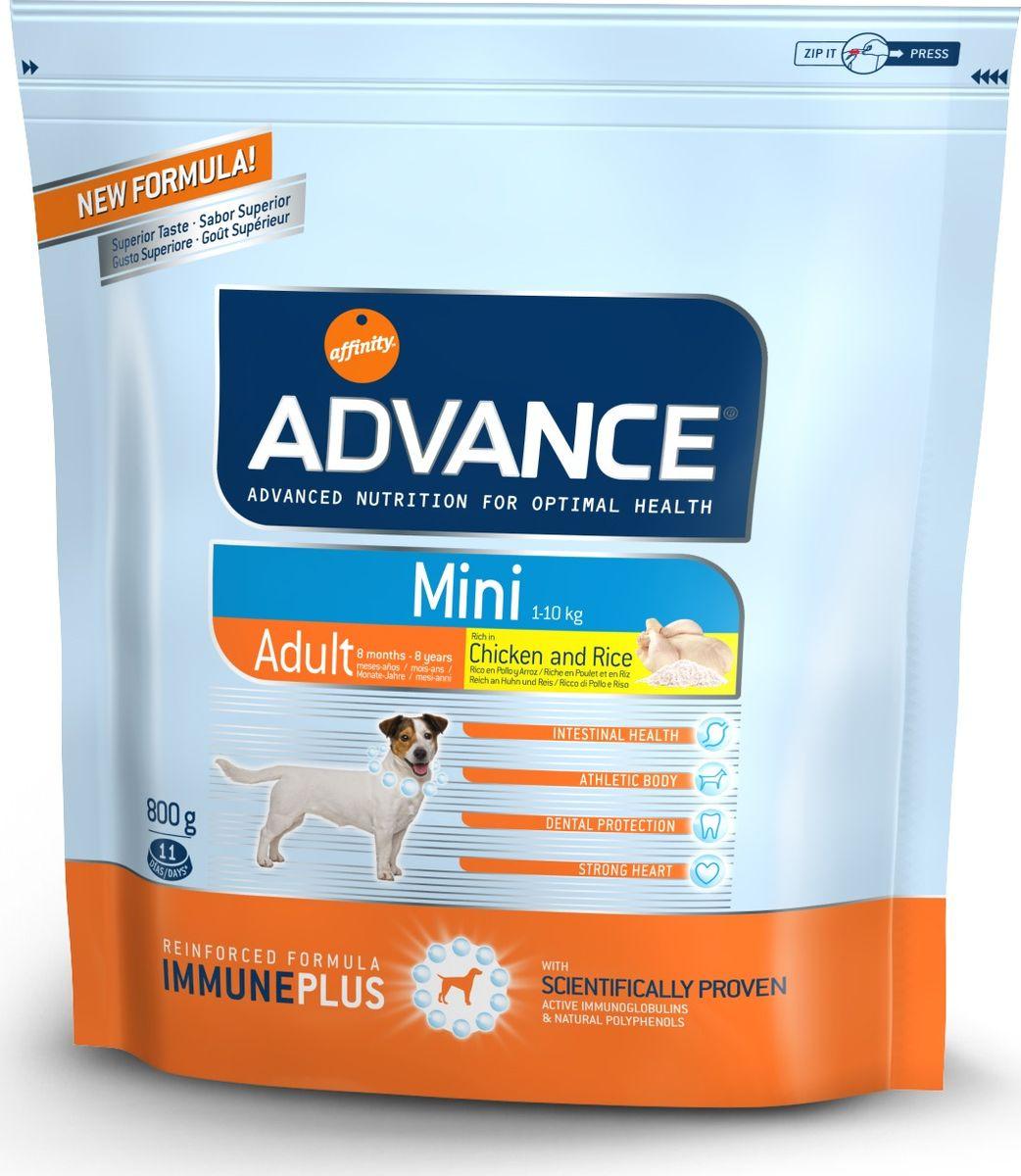 Корм сухой Advance Mini Adult для взрослых собак малых пород с 8 месяцев, 0,8 кг0120710Advance - высококачественный корм супер-премиум класса испанской компании Affinity Petcare, которая занимает лидирующие места на европейском и мировом рынках. Корм разработан с учетом всех особенностей развития и жизнедеятельности собак и кошек. В линейке кормов Advance любой хозяин может подобрать необходимое питание в соответствии с возрастом и уникальными особенностями своего животного, а также в случае назначения специалистами ветеринарной диеты. Affinity Petcare имеет собственную лабораторию, а также сотрудничает с множеством международных исследовательских центров, благодаря чему специалисты постоянно совершенствуют рецептуру и полезные свойства своих кормов. В составе главным источником белка является СВЕЖЕЕ мясо, благодаря которому корм обладает высокими вкусовыми качествами, а также высокой питательной ценностью. Состав: курица (20%), рис (15%), дегидрированное мясо курицы, пшеница, маисовый глютен, животный жир, маис, гидролизированный белок животного происхождения, свекольный жом, рыбий жир, яичный порошок, дрожжи, хлористый калий, плазменный протеин, пирофосфорнокислый натрий, карбонат кальция, соль, природные полифенолы. Анализ: протеин 28%, жиры 19%, сырые волокна 2%, неорганическое вещество 6,5%, кальций 1,3%, фосфор 1%, влажность 9%.Энергетическая ценность 3890 ккал/кг.