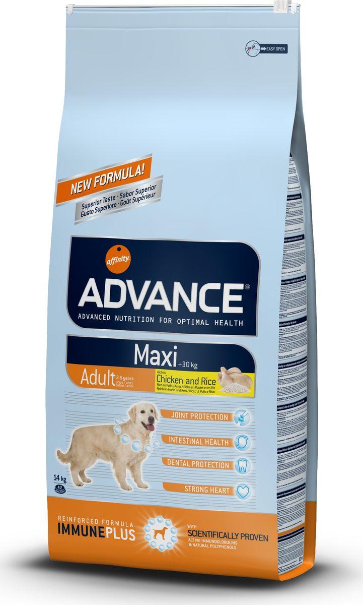 Корм сухой Advance Maxi Adult для взрослых собак крупных пород, 14 кг0120710Advance - высококачественный корм супер-премиум класса испанской компании Affinity Petcare, которая занимает лидирующие места на европейском и мировом рынках. Корм разработан с учетом всех особенностей развития и жизнедеятельности собак и кошек. В линейке кормов Advance любой хозяин может подобрать необходимое питание в соответствии с возрастом и уникальными особенностями своего животного, а также в случае назначения специалистами ветеринарной диеты. Affinity Petcare имеет собственную лабораторию, а также сотрудничает с множеством международных исследовательских центров, благодаря чему специалисты постоянно совершенствуют рецептуру и полезные свойства своих кормов. В составе главным источником белка является СВЕЖЕЕ мясо, благодаря которому корм обладает высокими вкусовыми качествами, а также высокой питательной ценностью. Состав: курица (16%), дегидрированное мясо курицы, рис (15%), пшеница, маисовый глютен, маис, животный жир, гидролизированный белок животного происхождения, свекольный жом, яичный порошок, дрожжи, рыбий жир, хлористый калий, плазменный протеинs, пирофосфорнокислый натрий, глюкозамин, хондроитин сульфат, природные полифенолы.Анализ: протеин 27%, жиры 15%, сырые волокна 2,5%, неорганическое вещество 6%, кальций 1,1%, фосфор 1%, натрий 0,3%, влажность 9%.Энергетическая ценность 3638 ккал/кг.