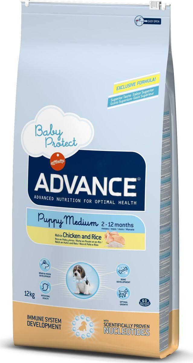 Корм сухой Advance Baby Protect Medium для щенков средних пород от 2 до 12 месяцев, с курицей и рисом, 12 кг0120710Advance - высококачественный корм супер-премиум класса испанской компании Affinity Petcare, которая занимает лидирующие места на европейском и мировом рынках. Корм разработан с учетом всех особенностей развития и жизнедеятельности собак и кошек. В линейке кормов Advance любой хозяин может подобрать необходимое питание в соответствии с возрастом и уникальными особенностями своего животного, а также в случае назначения специалистами ветеринарной диеты. Affinity Petcare имеет собственную лабораторию, а также сотрудничает с множеством международных исследовательских центров, благодаря чему специалисты постоянно совершенствуют рецептуру и полезные свойства своих кормов. В составе главным источником белка является СВЕЖЕЕ мясо, благодаря которому корм обладает высокими вкусовыми качествами, а также высокой питательной ценностью.Корм сухой Advance Baby Protect Maxi содержит эксклюзивную формулу, содержащую нуклеотиды, которая помогает повысить эффективность репликации клеток и обеспечивает оптимальное развитие тканей растущих щенков. Ускоренный эффект репликации клеток позволяет активизировать иммунную систему, усиливая защитный барьер организма против бактерий, вирусов и других патогенов. Корм с содержанием пребиотиков, пробиотиков и иммуноглобулинов для правильного развития и защиты желудочно-кишечного тракта. Состав: курица (20%), рис (17%), дегидрированное мясо курицы, мука из маиса, маис, животный жир, гидролизованный белок животного происхождения, пшеница, свекольный жом, рыбий жир, яичный порошок, дрожжи, плазменный протеин, хлористый калий, соль, трикальцийфосфат, нуклеотиды.Анализ: протеин 30%, жиры 19%, сырые волокна 2%, неорганическое вещество 7%, кальций 1,2%, фосфор 1%, влажность 9%.Энергетическая ценность 3890 ккал/кг. Товар сертифицирован.