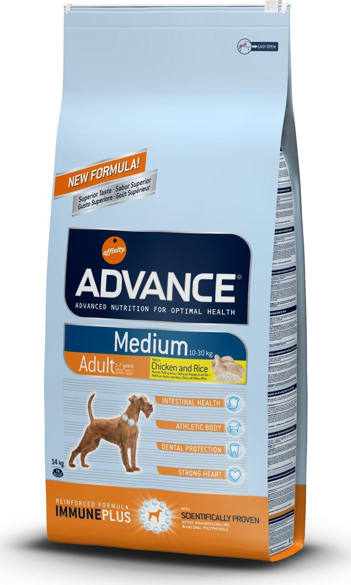 Корм сухой Advance Medium Adult для собак средних пород, с курицей и рисом, 14 кг0120710Advance - высококачественный корм супер-премиум класса испанской компании Affinity Petcare, которая занимает лидирующие места на европейском и мировом рынках. Корм разработан с учетом всех особенностей развития и жизнедеятельности собак и кошек. В линейке кормов Advance любой хозяин может подобрать необходимое питание в соответствии с возрастом и уникальными особенностями своего животного, а также в случае назначения специалистами ветеринарной диеты. Affinity Petcare имеет собственную лабораторию, а также сотрудничает с множеством международных исследовательских центров, благодаря чему специалисты постоянно совершенствуют рецептуру и полезные свойства своих кормов. В составе главным источником белка является СВЕЖЕЕ мясо, благодаря которому корм обладает высокими вкусовыми качествами, а также высокой питательной ценностью. Состав: курица (20%), рис (15%), дегидрированное мясо курицы, пшеница, мука из маиса, животный жир, маис, гидролизованный белок животного происхождения, свекольный жом, рыбий жир, яичный порошок, дрожжи, хлористый калий, плазменный протеин, пирофосфорнокислый натрий, соль, природные полифенолы. Анализ: протеин 27%, жиры 18,5%, сырые волокна 2%, неорганическое вещество 6,5%, кальций 1,3%, фосфор 1%, влажность 9%.Энергетическая ценность 3865 ккал/кг. Товар сертифицирован.