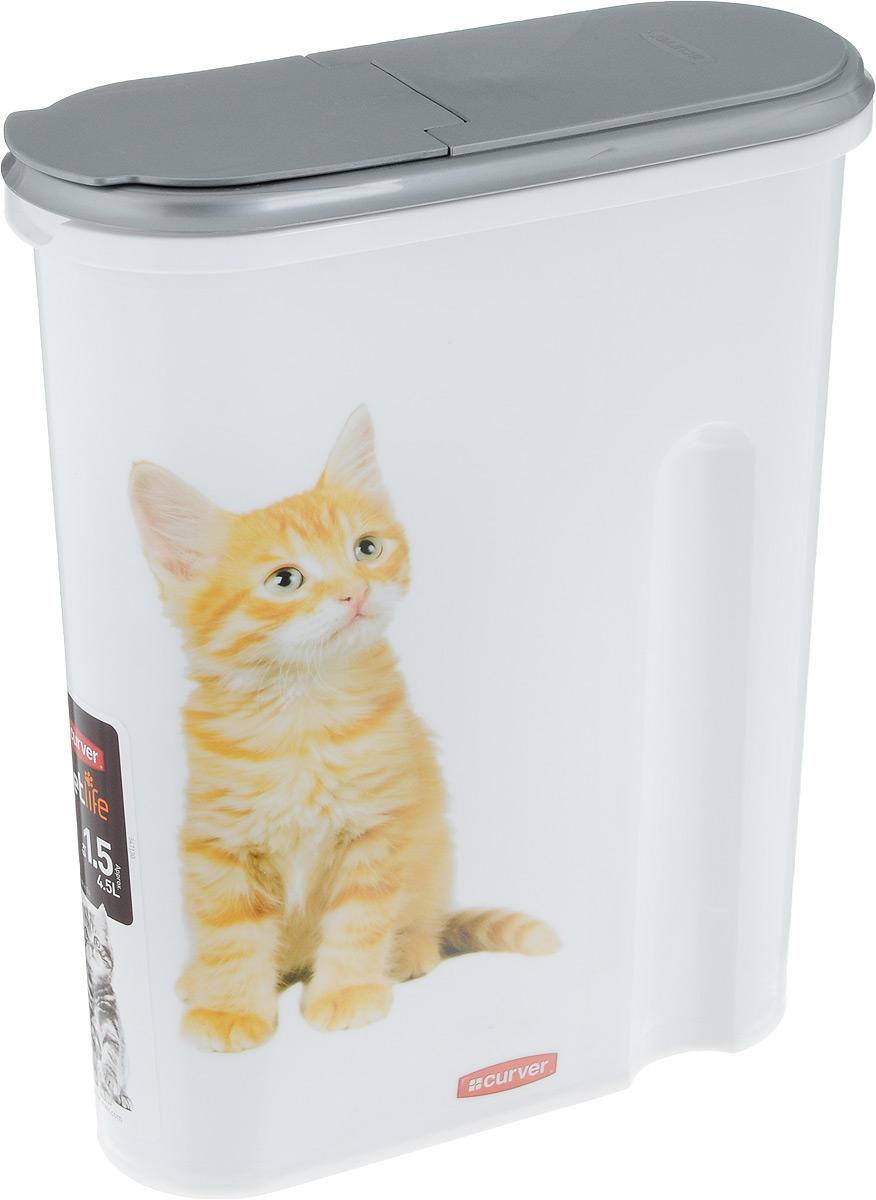 Контейнер Curver Pet Life. для хранения сухого корма, 4,5 л0120710Контейнер Curver PetLife, выполненный из экологически чистого пищевого пластика, оформлен изображением котят и предназначен для хранения сухого корма. Изделие оснащено плотно закрывающийся крышкой, что позволяет сохранить вкус и запах корма и предотвратить проникновение не только влаги, но паразитов и грызунов. Вытянутая форма контейнера делает его удобным для хранения.Объем: 4,5 л. Вес корма: 1,5 кг.Размер контейнера: 25 х 10 х 30 см.
