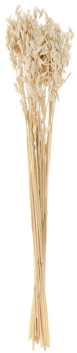 Украшение декоративное Lovemark Пучок овса, цвет: бежевый, длина 70 смC0038550Украшение декоративное Lovemark Пучок овса - великолепный подарок себе и вашим близким. Этот очаровательный предмет интерьера будет приковывать взгляды ваших гостей.Изделия из соломы несут в себе энергию солнечных лучей. Несмотря на свой хрупкий вид, солома - прочный и долговечный материал, а значит не помнется и не поломается со временем. Рекомендации по уходу: изделие должно находиться в сухом помещении.