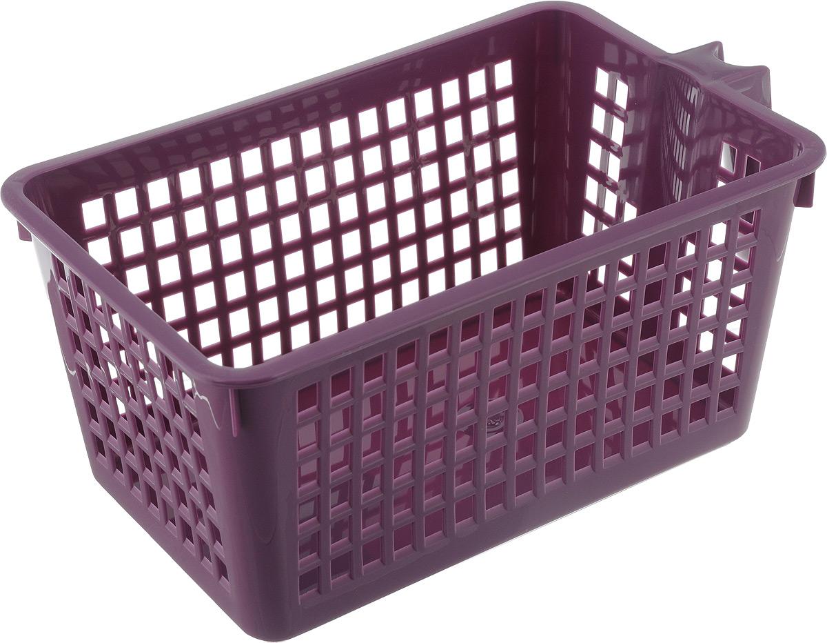 Корзинка универсальная Econova, с ручкой, цвет: фиолетовый, 28 х 16 х 12 см93976Универсальная корзинка Econova изготовлена из высококачественного пластика и предназначена для хранения и транспортировки вещей. Корзинка подойдет как для пищевых продуктов, так и для ванных принадлежностей и различных мелочей. Изделие оснащено ручкой для более удобной транспортировки. Стенки корзинки оформлены перфорацией, что обеспечивает естественную вентиляцию.Удобная корзинка позволит вам хранить вещи компактно и с удобством.