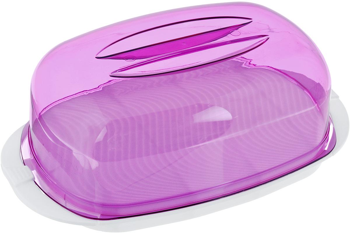 Контейнер Giaretti, цвет: фиолетовый, белый, 29,2 х 17 х 11 см4630003364517Контейнер  Giaretti изготовлен из высококачественного пластика. Изделие идеально подходит для подачи готовых блюд на стол: ассорти сыров, пирожных, бутербродов для завтрака, а также для хранения продуктов в холодильнике.Контейнер имеет крышку, которая плотно закрывается на две защелки. Можно мыть в посудомоечной машине.Размер контейнера: 29,2 х 17 см. Высота контейнера: 11 см.