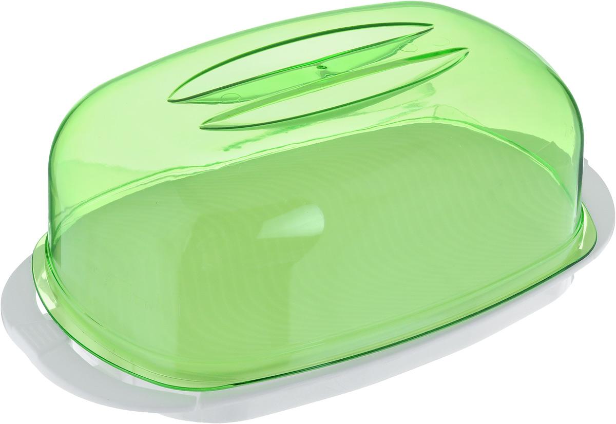 Контейнер Giaretti, цвет: зеленый, белый, 29,2 х 17 х 11 смVT-1520(SR)Контейнер  Giaretti изготовлен из высококачественного пластика. Изделие идеально подходит для подачи готовых блюд на стол: ассорти сыров, пирожных, бутербродов для завтрака, а также для хранения продуктов в холодильнике.Контейнер имеет крышку, которая плотно закрывается на две защелки. Можно мыть в посудомоечной машине.Размер контейнера: 29,2 х 17 см. Высота контейнера: 11 см.