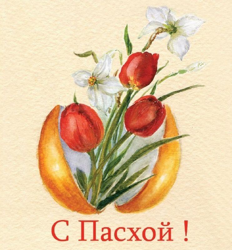 Открытка поздравительная Darinchi, формат А5 №48А5_48Замечательная поздравительная открытка