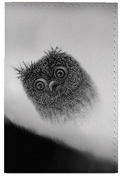 Обложка для паспорта женская Mitya Veselkov Сова в тумане, цвет: серый. OZAM415W16-11135_914Качественная обложка Mitya Veselkov Сова в тумане выполнена из приятного на ощупь винила. Рисунок нанесён специальным образом и защищён от стирания. Изделие раскладывается пополам.Яркий современный дизайн, который является основной фишкой данной модели, будет радовать глаз.