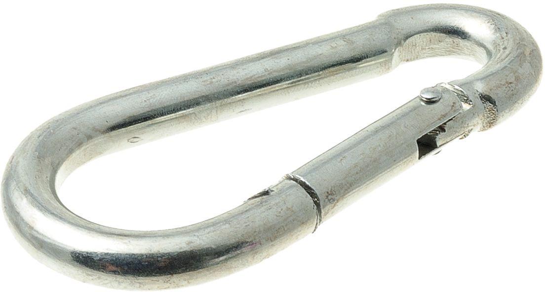 Карабин монтажный V.I.Pet Кит, цвет: серебристый, 100 х 10 мм. 245M-100M1223-1Прочный и удобный монтажный карабин для поводков.Размер карабина: 100 х 10 мм.Материал: сталь.