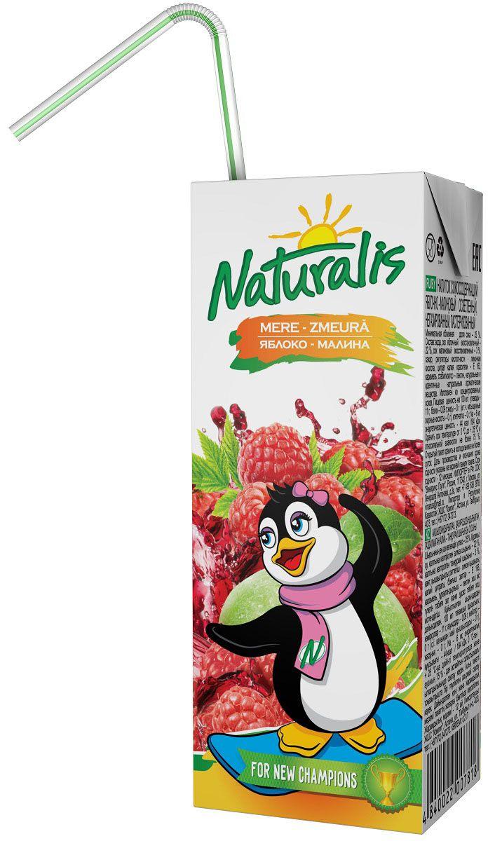 Naturalis нектар яблочно-малиновый, 0,2 л4607050696663Яблочно-малиновый нектар Naturalis - это отличный вкус и польза для здоровья. Малина - единственная ягода, которая не утрачивает своих целебных свойств при варке, т.е. содержит и витамин С, и А, некоторые пектиновые вещества. Naturalis в пакете 200 мл с трубочкой - это порционная упаковка, которая понравится вашему ребенку. Без ароматизаторов, красителей и консервантов. Перед употреблением взбалтывать.