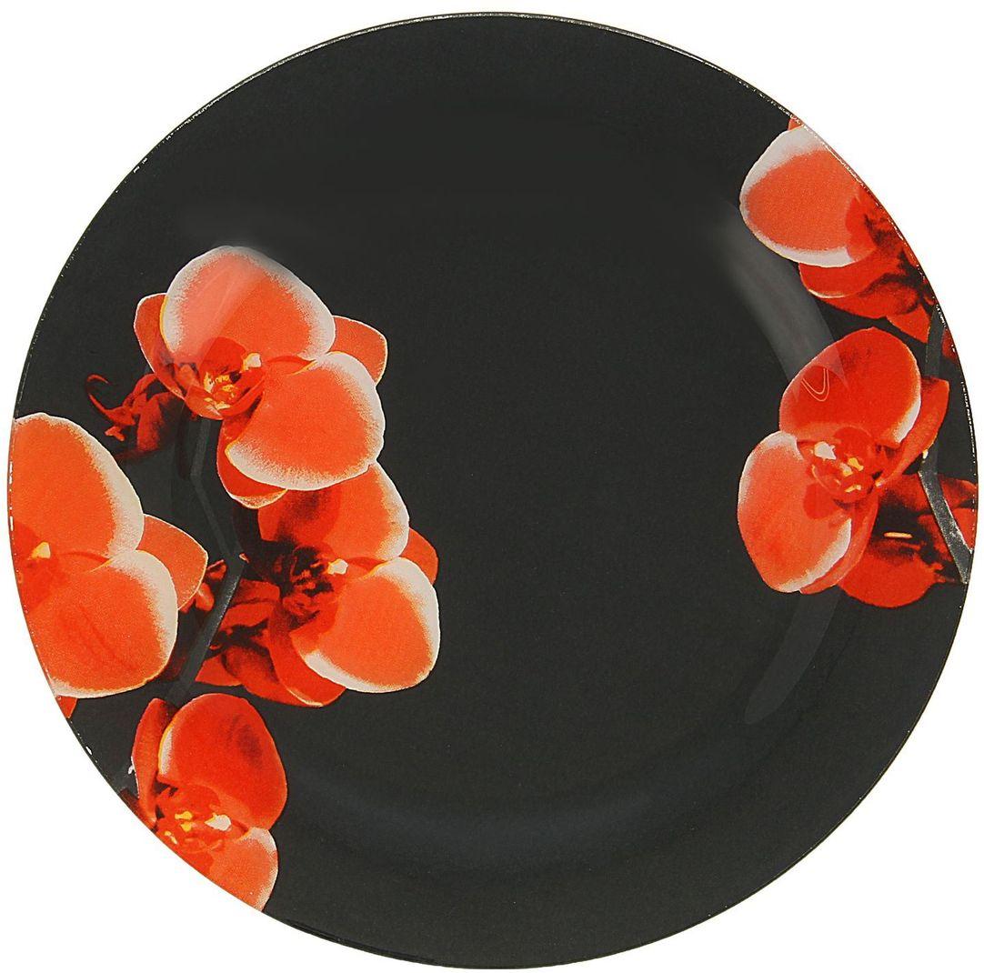Тарелка Доляна Орхидеи на черном, диаметр 22 см115010Тарелка Доляна с природными мотивами в оформлении разнообразит интерьер кухни и сделает застолье самобытным и запоминающимся. Качественное стекло не впитывает запахов, гладкая поверхность обеспечивает легкость мытья.Рекомендуется избегать использования абразивных моющих средств.Делайте любимый дом уютнее!