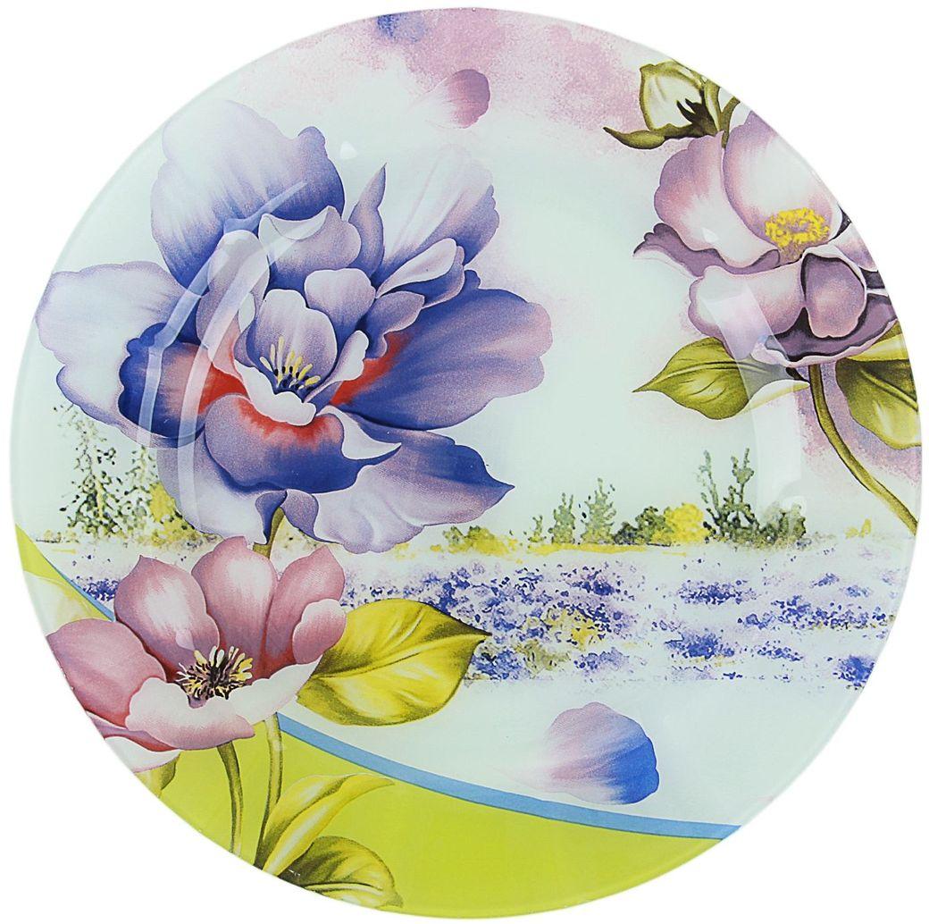 Тарелка Доляна Лиловый соблазн, диаметр 25 см073442Тарелка Доляна с природными мотивами в оформлении разнообразит интерьер кухни и сделает застолье самобытным и запоминающимся. Качественное стекло не впитывает запахов, гладкая поверхность обеспечивает легкость мытья.Рекомендуется избегать использования абразивных моющих средств.Делайте любимый дом уютнее!