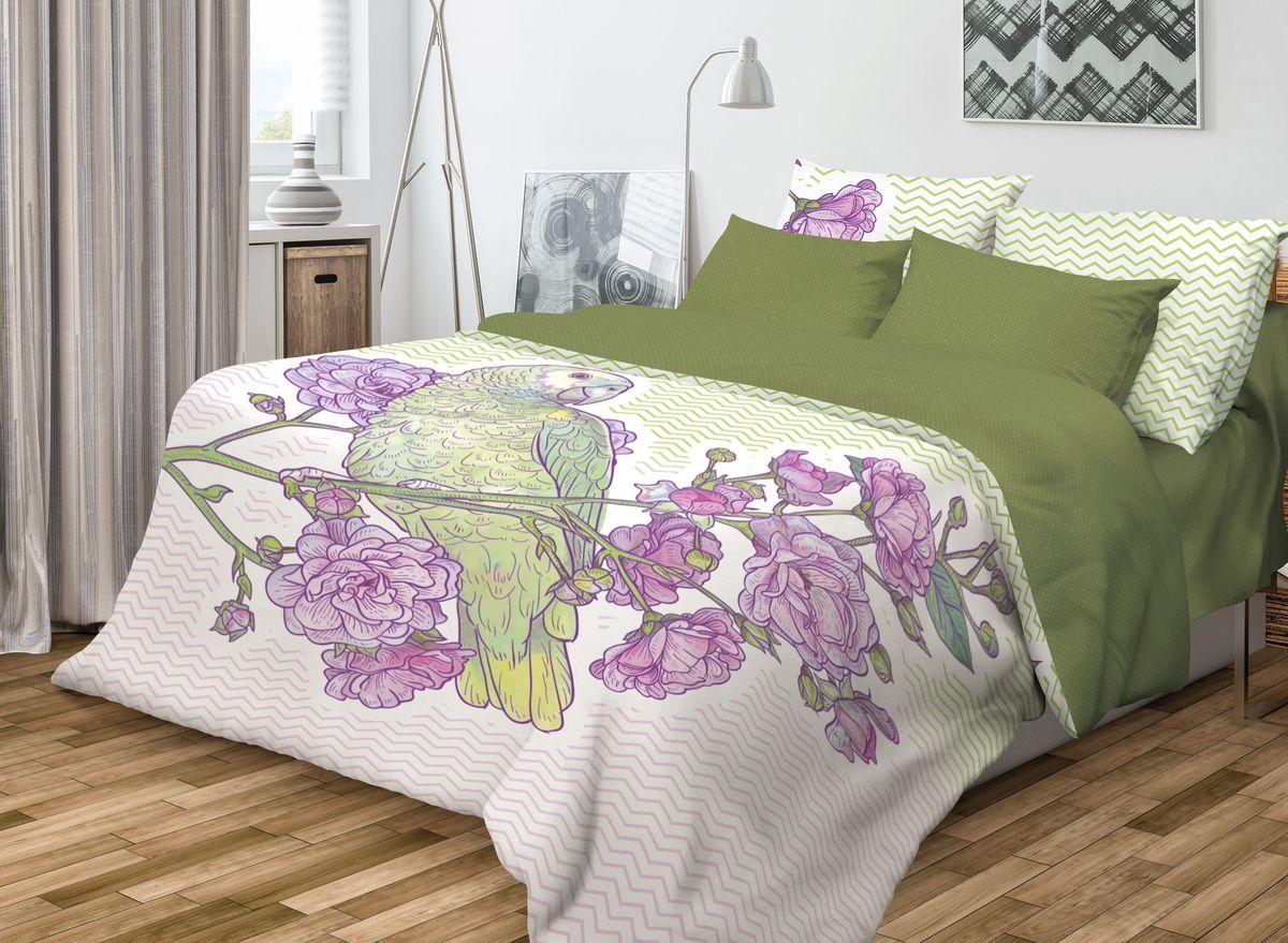Комплект белья Волшебная ночь Parrot, 1,5-спальный, наволочки 70х70, цвет: зеленый, фиолетовый, белый10503Роскошный комплект постельного белья Волшебная ночь Parrot выполнен из натурального ранфорса (100% хлопка) и оформлен оригинальным рисунком. Комплект состоит из пододеяльника, простыни и двух наволочек. Ранфорс - это новая современная гипоаллергенная ткань из натуральных хлопковых волокон, которая прекрасно впитывает влагу, очень проста в уходе, а за счет высокой прочности способна выдерживать большое количество стирок. Высочайшее качество материала гарантирует безопасность.