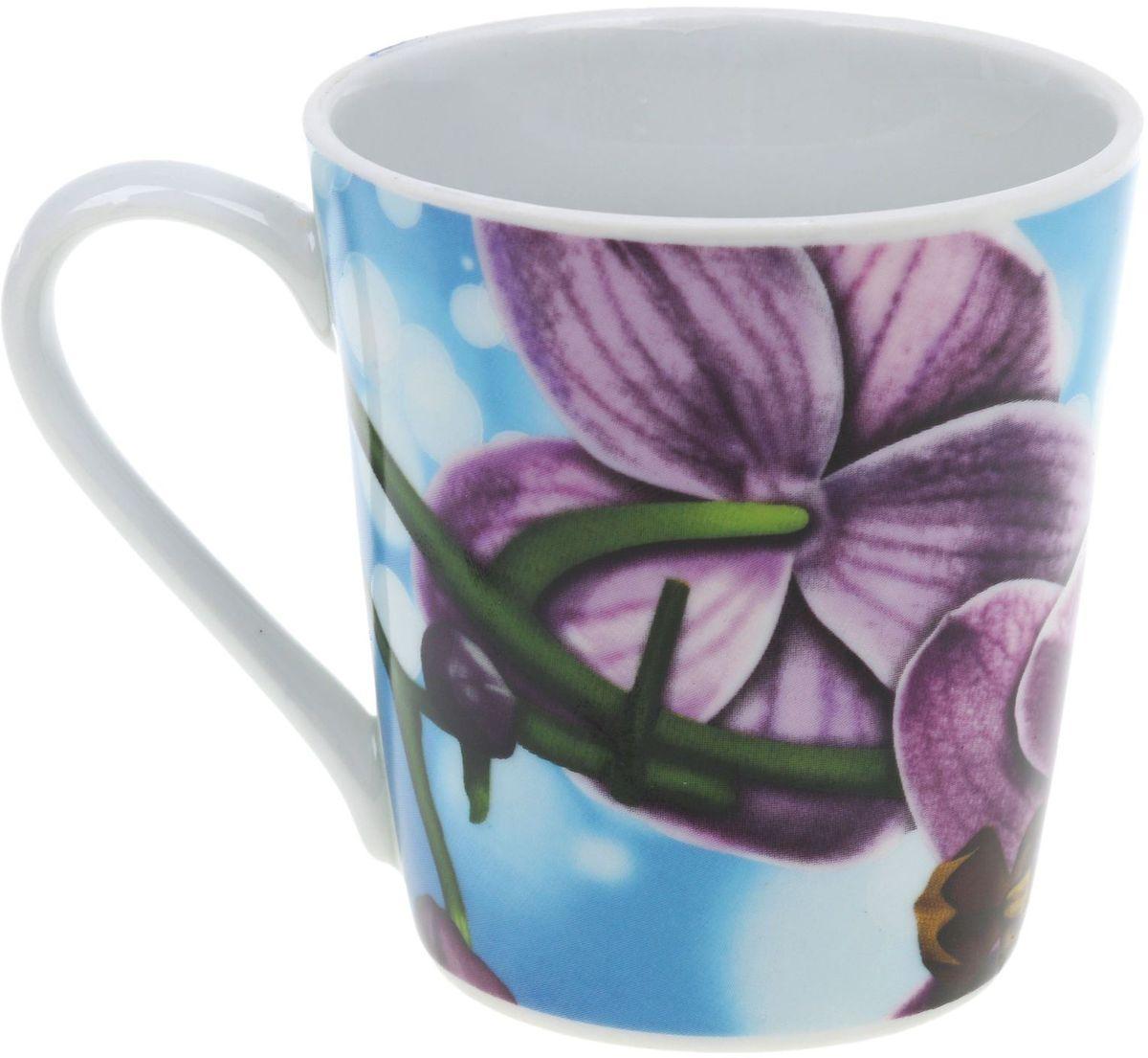 Кружка Классик. Орхидея, цвет: голубой, зеленый, фиолетовый, 300 мл391602Кружка Классик. Орхидея изготовлена из высококачественного фарфора. Изделие оформлено красочным цветочным рисунком и покрыто превосходной сверкающей глазурью. Изысканная кружка прекрасно оформит стол к чаепитию и станет его неизменным атрибутом.Диаметр кружки (по верхнему краю): 8,5 см.Высота стенок: 9,5 см.