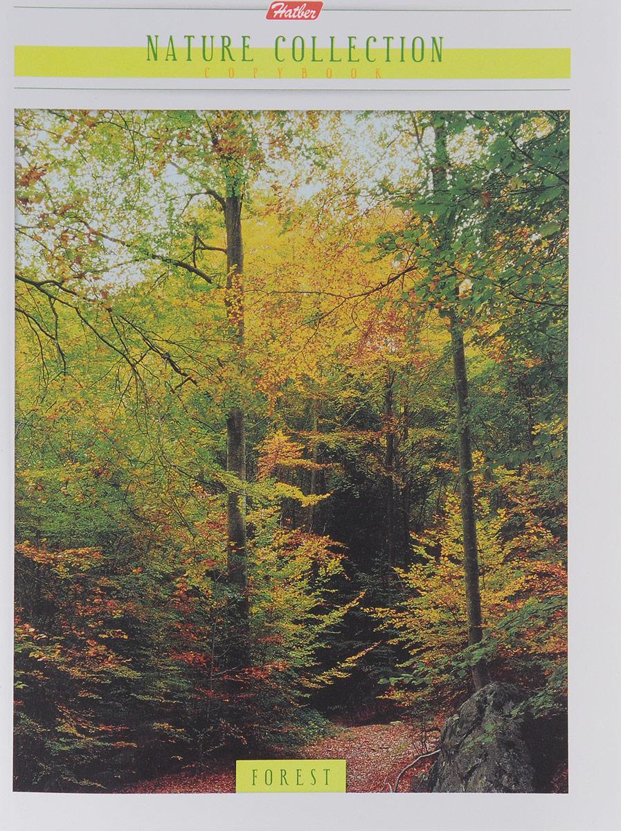 Тетрадь Hatber Forest отлично подойдет для занятий школьнику или студенту.Обложка выполнена из плотного картона. Внутренний блок тетради, соединенный металлическими скрепками, состоит из 96 листов белой бумаги в голубую клетку с полями.