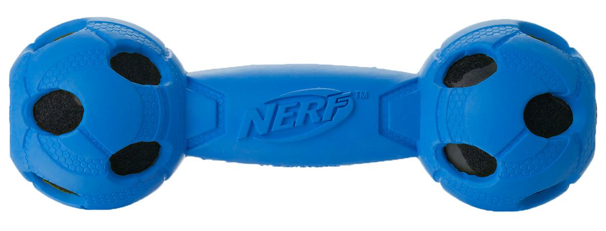 Игрушка для собак Nerf Гантель, с отверстиями, цвет: синий, 17,5 смGLG024Гантель из прочной резины Nerf с теннисными мячами внутри.Высококачественные прочные материалы, из которых изготовлена игрушка, обеспечивают долговечность использования.Звук мяча дополнительно увлекает собаку игрой.Яркие привлекательные цвета и рельефный рисунок привлекут внимание.Размер М: 17,5 см.