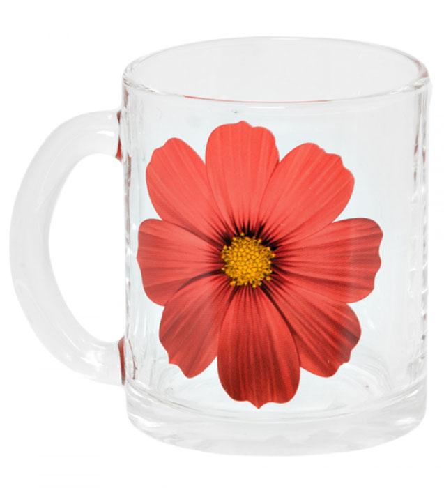 Кружка OSZ Чайная. Космея, 320 мл. 04C1208-KS54 009312Кружка OSZ Чайная. Космея изготовлена из прочного, прозрачного стекла и оформлена изображением цветка. Изделие оснащено удобной ручкой и сочетает в себе лаконичный дизайн и функциональность. Кружка OSZ Чайная. Космея не только украсит ваш кухонный стол, но подчеркнет прекрасный вкус хозяйки.