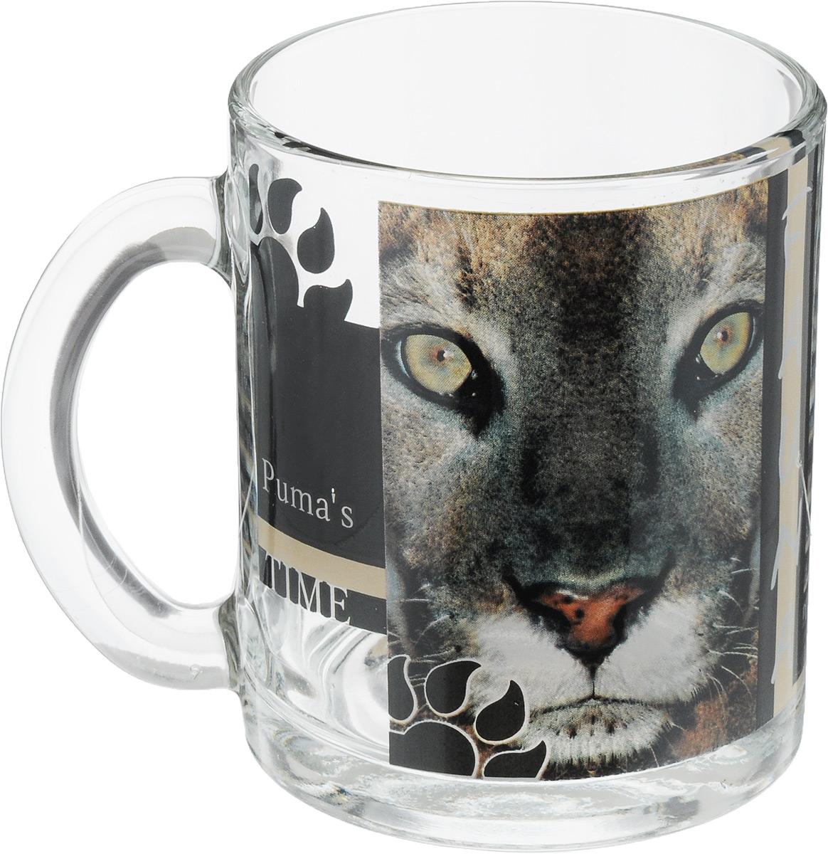 Кружка OSZ Чайная. Дикие кошки. Пума, 320 мл54 009312Кружка OSZ Чайная. Дикие кошки. Пума изготовлена из стекла и декорирована принтом.Диаметр (по верхнему краю): 7,5 см. Высота: 9,5 см. Объем: 320 мл.