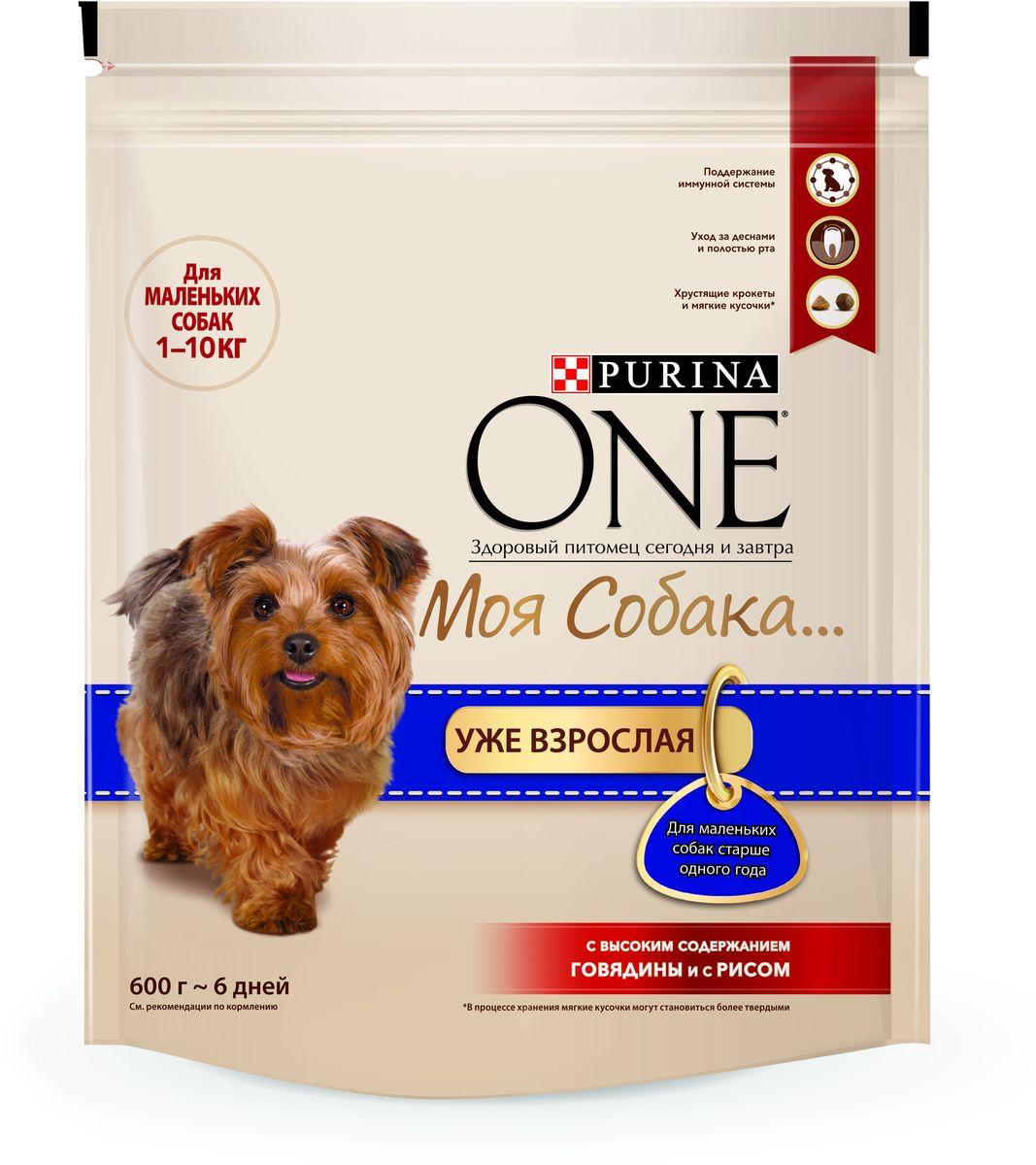 Корм сухой Purina One Моя Собака…Уже взрослая, с говядиной и рисом, 600 г0120710Вкусное сочетание хрустящих крокетов и мягких кусочков с высоким содержанием говядины, отличается высоким уровнем антиоксидантов для поддержания крепкой иммунной системы и необходимыми питательными веществами для ухода за полостью рта. Начните кормить вашего любимца кормом PURINA ONE® Моя Собака...и оцените видимый результат улучшения его здоровья.МЕ/кг: витамин А: 30 000; витамин D3:1 000; витамин E: 600. Мг/кг: витамин С: 140; железо: 69; йод: 1,7; медь: 10; марганец: 32; цинк: 130; селен: 0,11. Белок: 27,0%, Жир: 17,0%, Сырая зола: 7,0%, Сырая клетчатка: 1,5%.