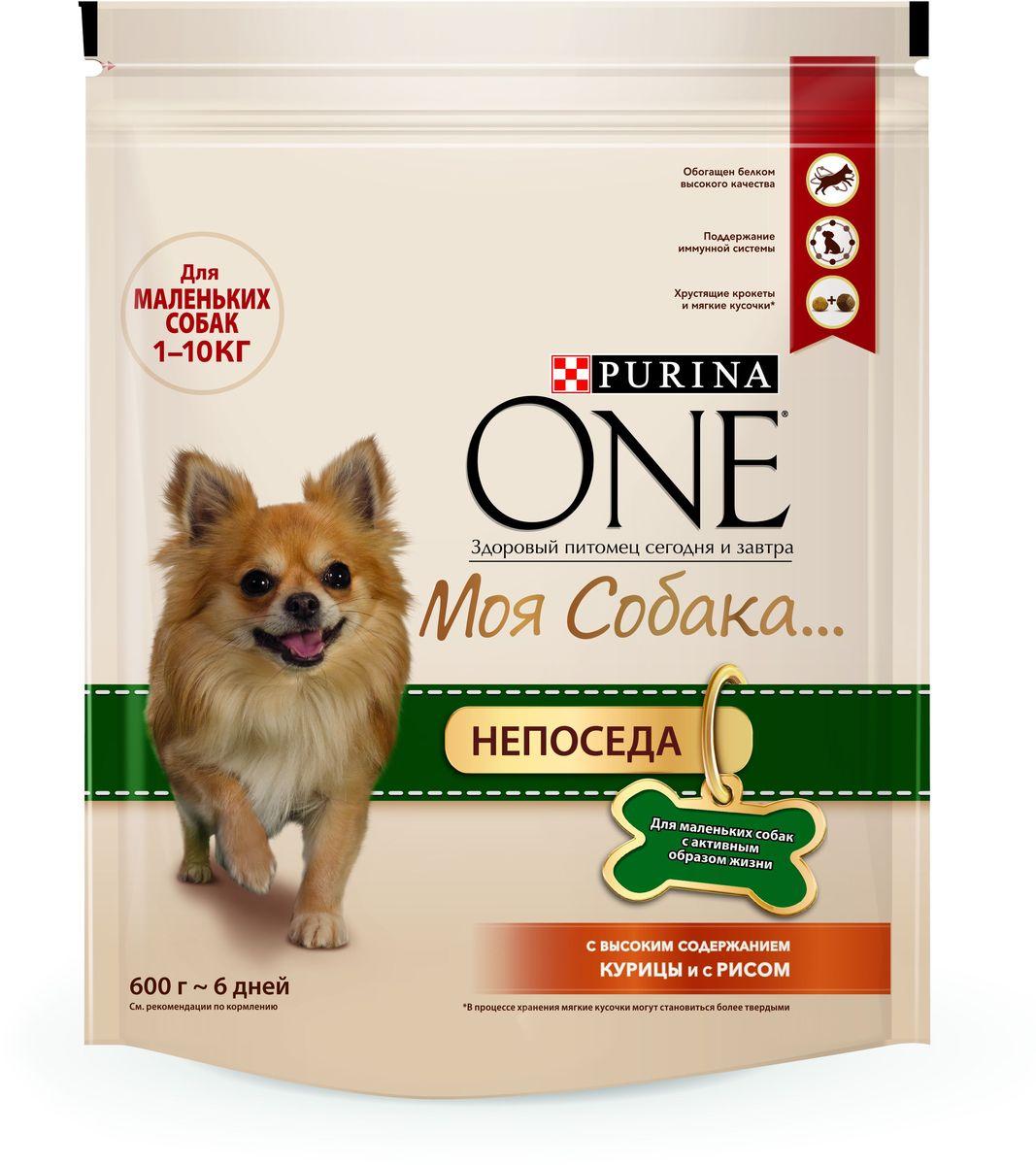 Корм сухой Purina One Мини Моя Собака…Непоседа, с курицей и рисом, 600 г12171996Корм сухой Purina One Мини Моя Собака…Непоседа - вкусное сочетание хрустящих крокетов и мягких кусочков с высоким содержанием курицы, отличается высоким уровнем протеинов, которые обеспечивают необходимый заряд энергии и поддержание крепкой иммунной системы. Товар сертифицирован.