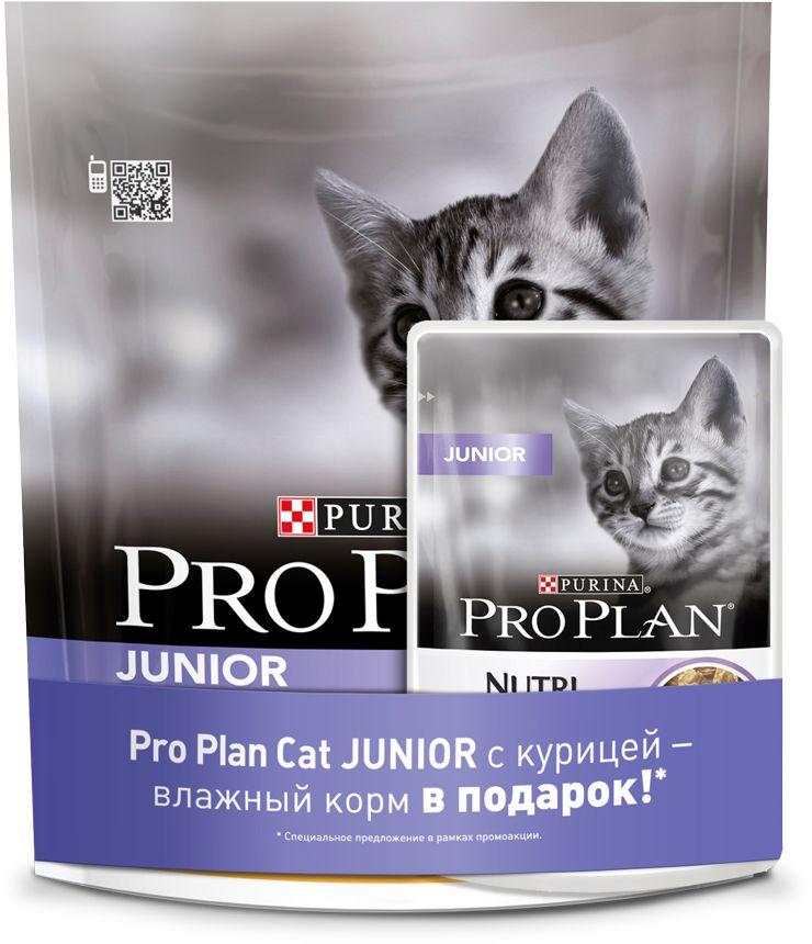 Корм сухой Pro Plan Junior для котят в возрасте от 6 недель до 1 года, с курицей, 400 г + влажный корм в подарок0120710Сухой корм Pro Plan Junior - это полноценный рацион для котят. Он содержит особую разработанную с участием ученых комбинацию ингредиентов для поддержания здоровья вашего питомца в течение продолжительного времени. Особенности сухого корма Pro Plan Junior: в состав корма входят все необходимые питательные вещества, включая витамины С и D, а также DHA антитела содержит OPTISTART, уникальную формулу для укрепления здоровья кишечника котят и уменьшения риска расстройства пищеварения поддерживает здоровый рост костей и мускулатуры помогает поддерживать здоровое развитие мозга и зрения усиливает иммунную систему благодаря молозиву, богатому антителами. Характеристики:Состав: курица (20%), рис, кукурузный глютен, сухой белок птицы, кукуруза, животный жир, кукурузный крахмал, минеральные вещества, пшеничный глютен, яичный порошок, вкусоароматическая кормовая добавка, рыбий жир, молозиво (0,1%). Добавленные вещества: МЕ/кг: витамин A: 36 400; витамин D3: 1 180; витамин E: 750. Мг/кг: витамин C: 140; железо: 335; йод: 4.0; медь: 68; марганец: 160; цинк: 570; селен: 0,38. С антиокислителями. Белок: 40%, жир: 20%, сырая зола: 6,5%, сырая клетчатка: 0,5%, DHA: 0,1%.Вес: 400 г. В состав кормов Pro Plan входят ингредиенты только высшего качества, обеспечивающие вашему питомцу долгую жизнь и здоровье. Разработанные ветеринарами и диетологами компании Purina корма Pro Plan включают комбинацию незаменимых питательных веществ в пропорциях, обеспечивающих оптимальное функционирование защитных систем вашего питомца. Результатом научных исследований является полнорационный корм, обеспечивающий природную защиту на всем протяжении жизни.