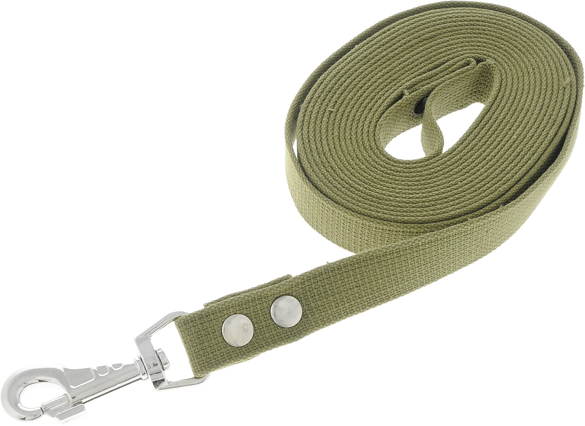 Поводок брезентовый для собак Adel-Dog, ширина 2,5 см, длина 5 м0120710Поводок для собак Adel-Dog, изготовленный из высококачественной брезентовой ткани, снабжен металлическим карабином. Изделие отличается не только исключительной надежностью и удобством, но и привлекательным дизайном.Поводок - необходимый аксессуар для собаки. Ведь в опасных ситуациях именно он способен спасти жизнь вашему любимому питомцу. Иногда нужно ограничивать свободу своего четвероногого друга, чтобы защитить его или себя от неприятностей на прогулке. Длина поводка: 5 м.Ширина поводка: 2,5 см.