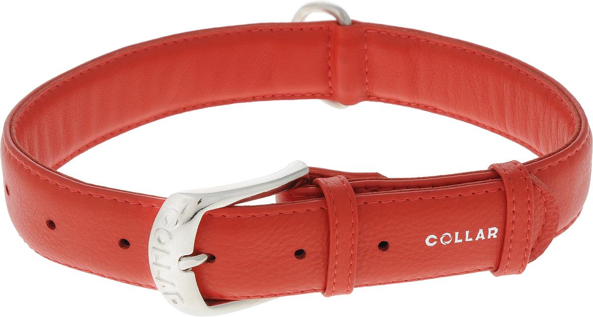Ошейник для собак CoLLaR Glamour, цвет: красный, ширина 3,5 см, обхват шеи 46-60 см. 345830120710Ошейник CoLLaR Glamour изготовлен из натуральной кожи, устойчивой к влажности и перепадам температур. Изделие декорировано объемной надписью Collar. Клеевой слой, сверхпрочные нити, крепкие металлические элементы делают ошейник надежным и долговечным. Размер ошейника регулируется при помощи металлической пряжки. Имеется металлическое кольцо для крепления поводка. Ваша собака тоже хочет выглядеть стильно! Такой модный ошейник станет для питомца отличным украшением и выделит его среди остальных животных. Изделие отличается высоким качеством, удобством и универсальностью.Обхват шеи: 46-60 см. Ширина: 3,5 см.