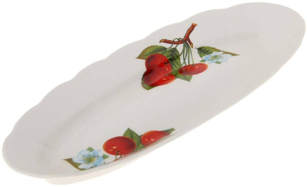 Селедочница Дружковский фарфор Свадебная. Вишенка115510Необходимый для любой хозяйки предмет, который сочетает в себе отличное качество и дизайн. Наша посуда станет преданным помощником на Вашей кухне.Покупать у нас просто – Вы заказываете понравившуюся продукцию, а мы доставляем Вам её в любое место!