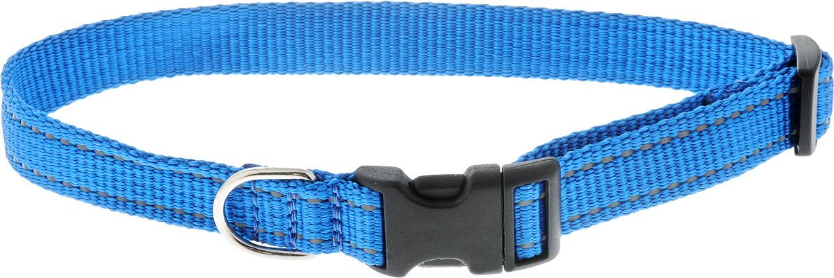 Ошейник Аркон Капрон, цвет: синий, ширина 2 см, длина 34-53 см0120710Ошейник Аркон Капрон изготовлен из высококачественного цветного капрона и и закрывается на пластиковую защелку. Изделие отличается не только высоким качеством, удобством и универсальностью, но и привлекательным современным дизайном.Иногда нужно ограничивать свободу своего четвероногого друга, чтобы защитить его или себя от неприятностей на прогулке. Длина ошейника: 34-53 см.Ширина ошейника: 2 см.