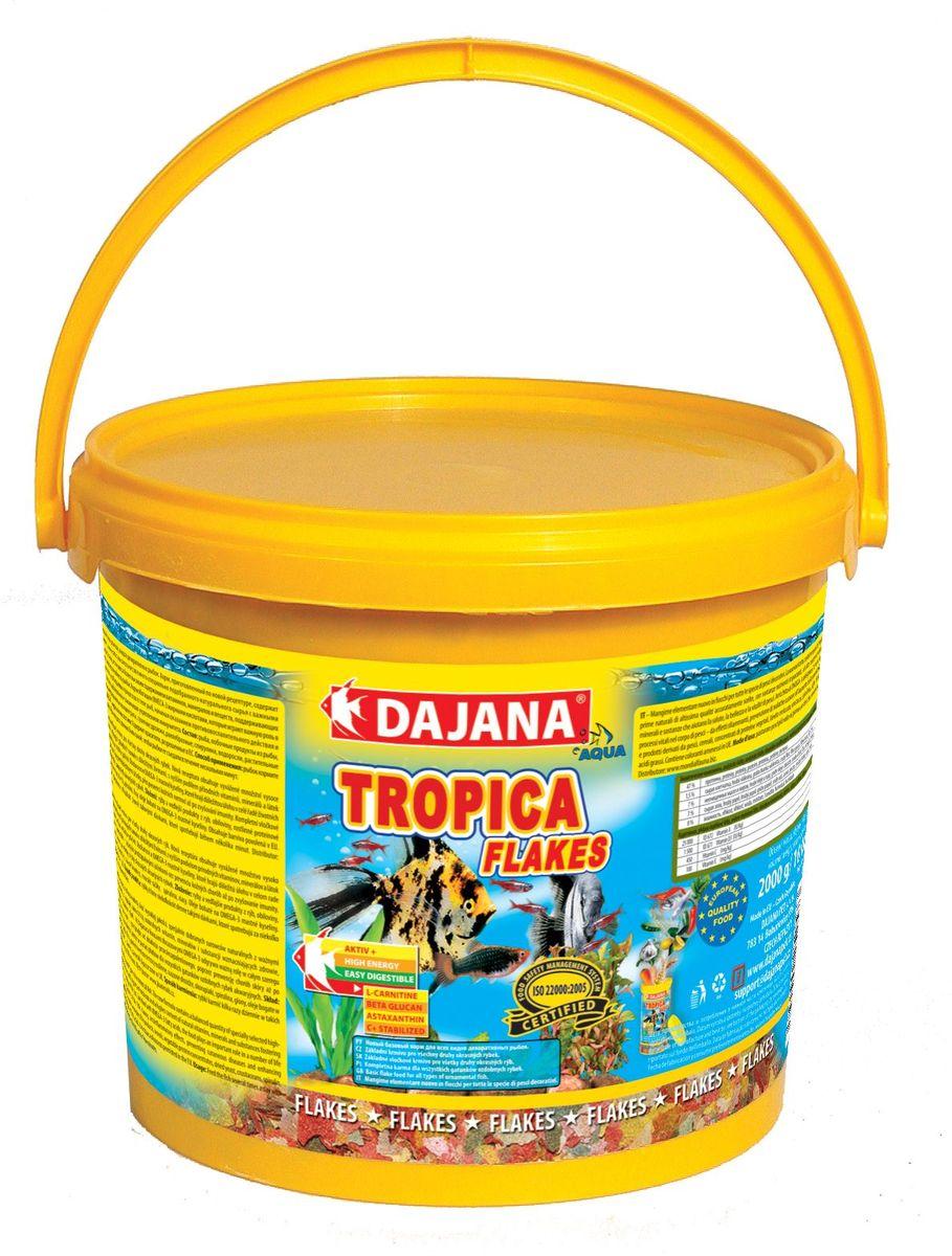Корм для рыб Dajana Tropica Flakes, 10 л0120710Высококачественный корм, состоящий из хлопьев на каждый день, для всех видов декоративных рыбок. Состоит из более 50-ти видов тщательно отобранных, натуральных исходных продуктов. Хлопья содержат мультивитаминный комплекс, стабилизированный витамин С, ценные минералы и микроэлементы. Питание этим кормом гарантирует здоровое развитие рыб, повышенную устойчивость к заболеваниям, активность, жизнерадостность и крепкий иммунитет.Благодаря натуральным продуктам, корм замечательно переваривается и усваивается в организме рыбок, не загрязняя воду в аквариуме.