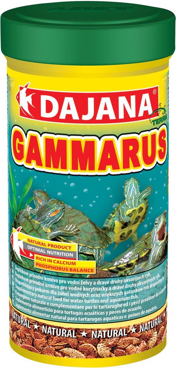 Корм для рыб и рептилий Dajana Gammarus, 100 мл12171996Природный натуральный корм из чистого, сушеного гаммаруса с высокой питательной ценностью и большим содержанием каротина. Для всех видов аквариумных рыб, водяных черепах и террариумных животных. Изысканное лакомство с полным набором питательных элементов, витаминов и минералов.Отобран в экологически чистых районах Сибири, благодаря специальной технологии низкой температурной обработки, сохраняет высокое содержание белка и другие биологически активные полезные вещества. При регулярном кормлении Dajana Gammarus благотворно влияет на пищеварительную систему, обеспечивая долгую и здоровую жизнь черепах.Состав: гаммарус.