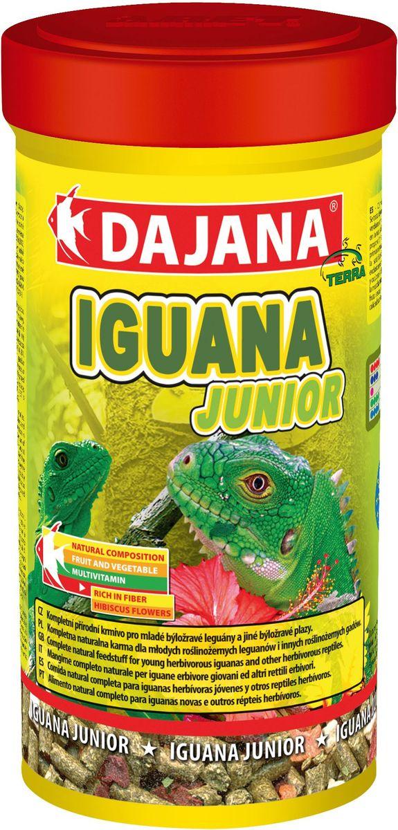 Корм для игуан Dajana Iguana Junior, 250 мл0120710Натуральный комплексный корм для молодых игуан. Корм представляет собой смесь высококачественного сушеного зеленого корма, отборных цветков алтея, крапивы, фруктов и овощей без каких-либо химических добавок.