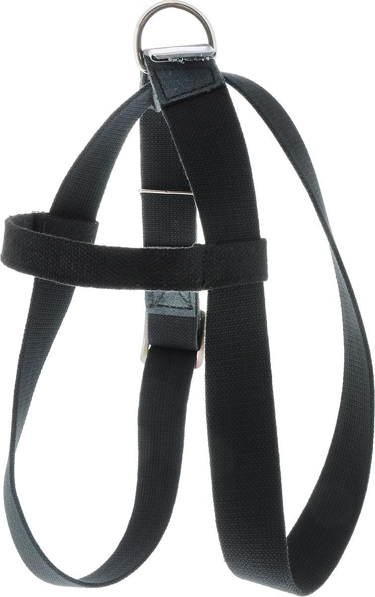 Шлейка для собак Каскад Классика, универсальная, цвет: черный, ширина 3,5 см, обхват груди 35-70 см101246Шлейка Каскад Классика, изготовленная из и брезента, подходит для собак средних пород. Крепкие металлические элементы делают ее надежной и долговечной. Шлейка - это альтернатива ошейнику. Правильно подобранная шлейка не стесняет движения питомца, не натирает кожу, поэтому животное чувствует себя в ней уверенно и комфортно.Изделие отличается высоким качеством, удобством и универсальностью.Размер регулируется при помощи пряжек.Обхват груди: 35-70 см. Ширина шлейки: 3,5 см.