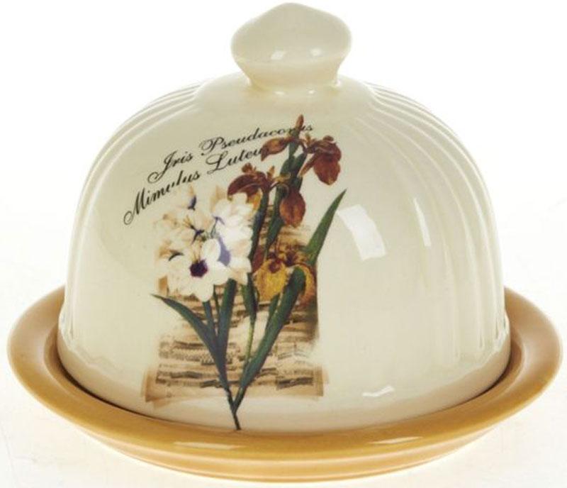 Масленка ENS Group ИрисVT-1520(SR)Лимонница Ирис выполнена из высококачественной керамики и состоит из блюдца и крышки. Изделие декорировано изображением цветов. Лимонница Ирис доставит истинное удовольствие ценителям прекрасного и поможет сохранить свежесть лимона на длительный срок. Уютный дизайн, несомненно, придется вам по вкусу.
