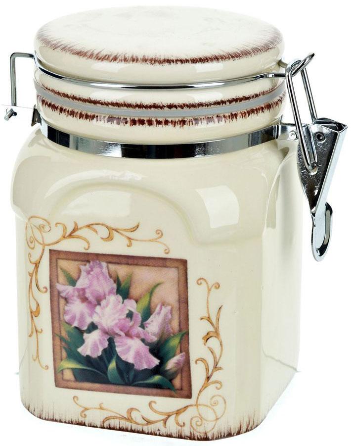 Банка для сыпучих продуктов ENS Group Розовый ирис, 800 млАксион Т-33Банка для сыпучих продуктов Розовый ирис изготовлена из прочной керамики, закрывается крышкой. Банка прекрасно подойдет для хранения различных сыпучих продуктов: чая, кофе, сахара, круп и многого другого. Благодаря силиконовой прослойке и бугельному замку, крышка герметично закрывается, что позволяет дольше сохранять продукты свежими. Изящная емкость не только поможет хранить разнообразные сыпучие продукты, но и стильно дополнит интерьер кухни.