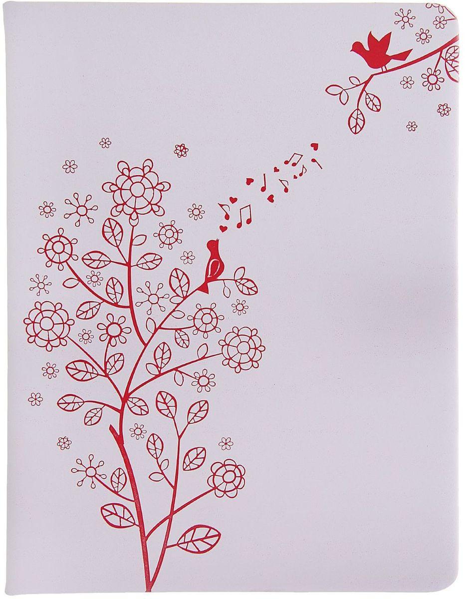 Дневник школьный Весна для 5-11 классов72523WDШкольный дневник Весна поможет вашему ребенку не забыть свои задания, а вы всегда сможете проконтролировать его успеваемость. На первой странице предусмотрено место для записей данных ученика.Дневник станет надежным помощником ребенка в получении новых знаний и принесет радость своему хозяину в учебные будни.