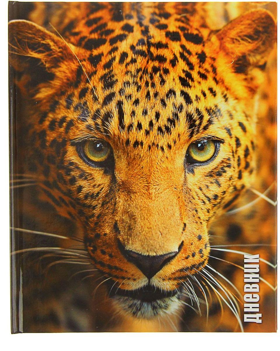 Calligrata Дневник школьный Леопард для 5-11 классов72523WDШкольный дневник Calligrata Леопард в твердом переплете поможет вашему ребенку не забыть свои задания, а вы всегда сможете проконтролировать его успеваемость.Внутренний блок дневника состоит из 48 листов белой бумаги с голубой линовкой. Твердая обложка с цветной печатью и глянцевой ламинацией обладает прочностью и износостойкостью. На переднем форзаце расположена карта России, на заднем - карта мира.Дневник станет надежным помощником ребенка в получении новых знаний и принесет радость своему хозяину в учебные будни.