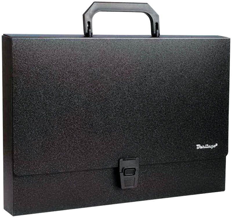 Berlingo Папка-портфель Standard цвет черныйMP2311Папка-портфель Berlingo Standard - это удобный и практичный офисный инструмент, предназначенный для хранения и транспортировки большого количества рабочих бумаг и документов формата А4. Папка-портфель изготовлена из плотного пластика, оснащена удобной ручкой для переноски, закрывается на широкий клапан с пластиковым замком.Папка-портфель - это незаменимый атрибут для студента, школьника, офисного работника. Такая папка надежно сохранит ваши документы и сбережет их от повреждений, пыли и влаги.