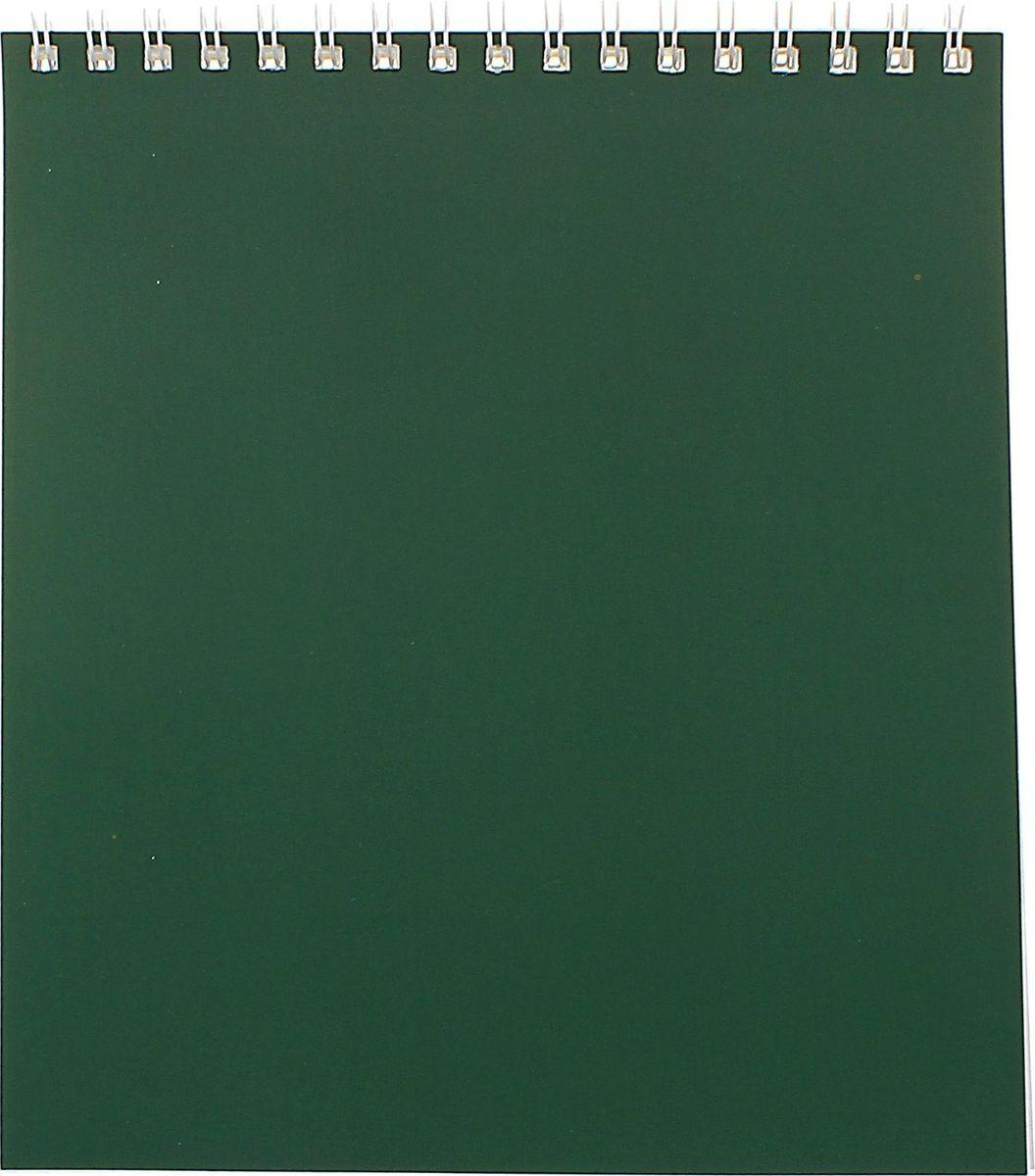 ПЗБФ Блокнот Корпоративный 40 листов цвет зеленый Формат A51705054Блокнот ПЗБФ Корпоративный формата A5 предназначен для записей и заметок. Обложка выполнена из картона. Внутренний блок содержит 40 листов в клетку. Такой аксессуар прекрасно подойдет для фиксации повседневных дел.