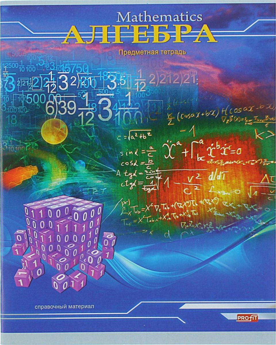 Profit Тетрадь Трехмерное пространство Алгебра 36 листов в клетку72523WDТетрадь Profit Алгебра пригодится вам в учебе для записей. На лицевой стороне изображены различные алгебраические функции, а сзади на обложке содержится информация об арифметической и геометрической прогрессиях. Прочная обложка из плотного картона сохранит ваши листы. Внутренний блок представлен 36 листами в клетку с очерченными полями. Тетрадь содержит справочный материал.