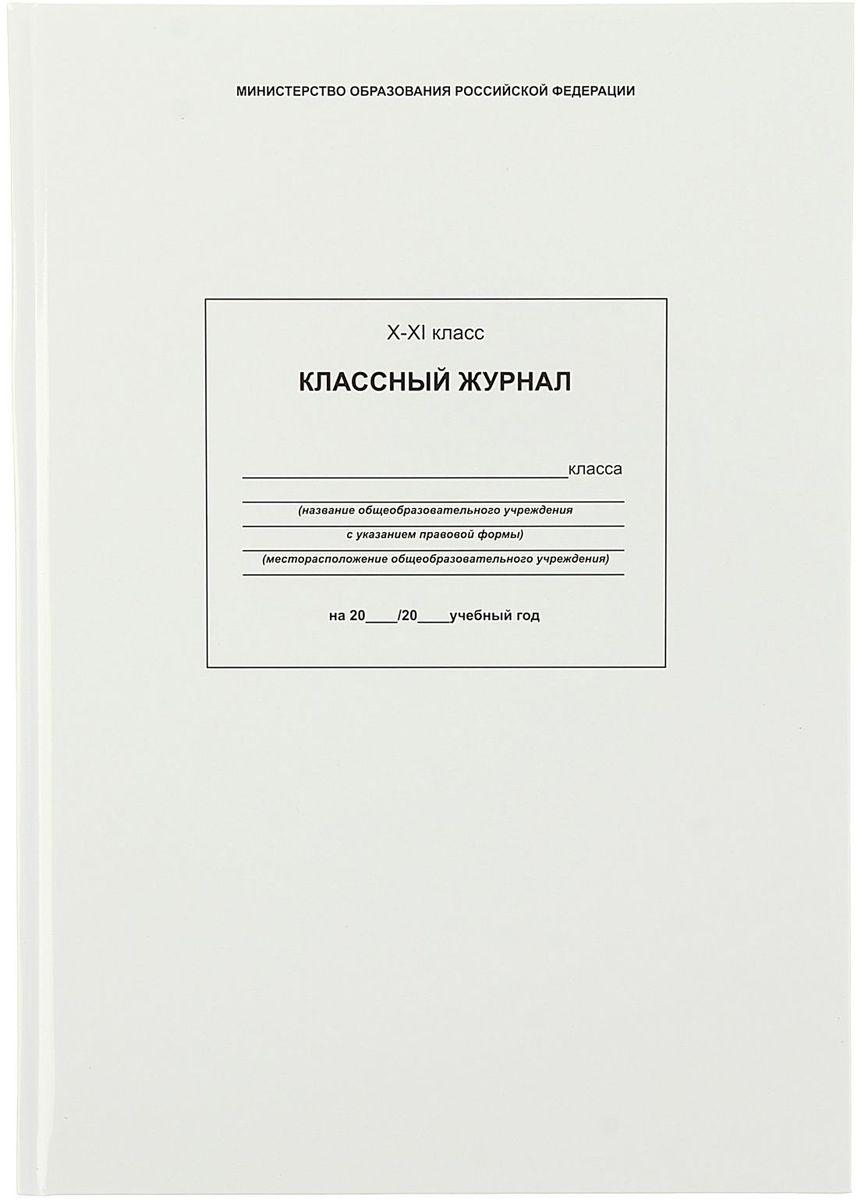 Проф-Пресс Классный журнал для 10-11 классов 96 листов1178299