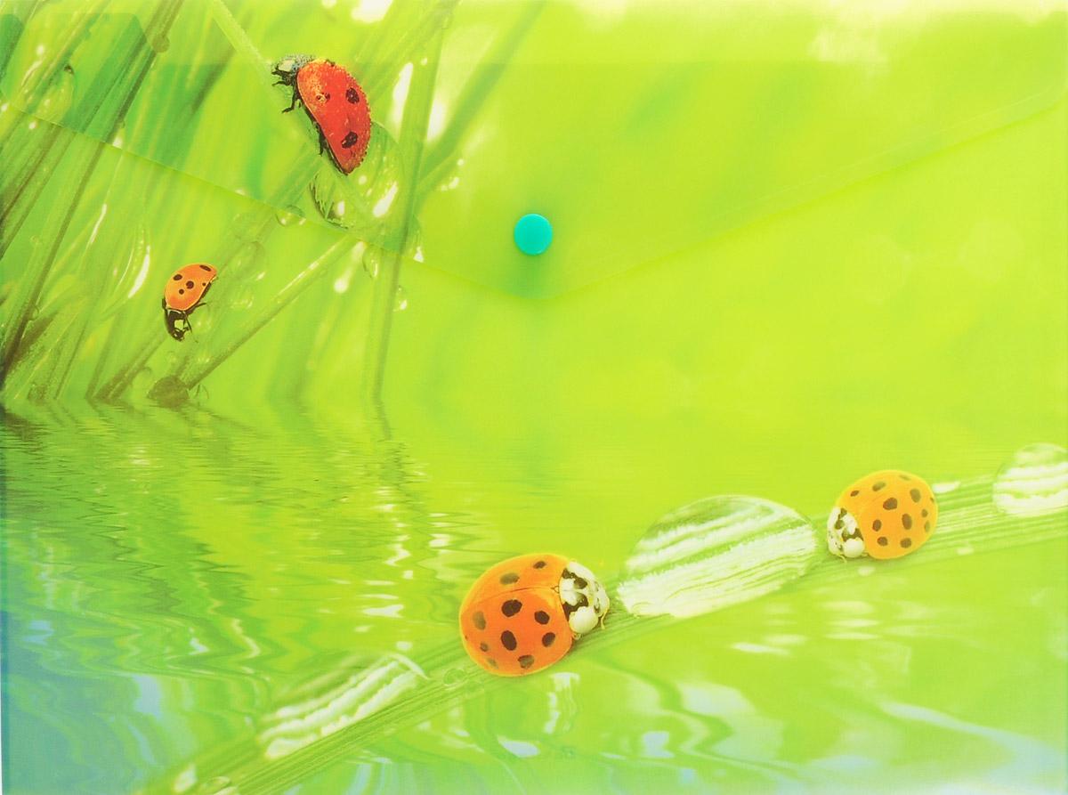 Berlingo Папка-конверт на кнопке LadybirdAC-1121RDПапка-конверт Berlingo Ladybird - это удобный и многофункциональный инструмент, который идеально подойдет для хранения и транспортировки различных бумаг и документов формата А4.Папка изготовлена из прочного пластика, закрывается на кнопку.Папка практична в использовании и надежно сохранит ваши документы и сбережет их от повреждений, пыли и влаги.